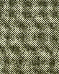 City Tweed Bonsai by