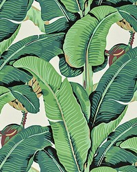 Hinson Palm Green by