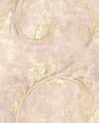 Nemone Pink by  Scalamandre Wallcoverings