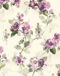 Lolita Purple by  Scalamandre Wallcoverings