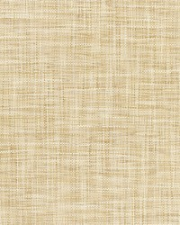 PE Eastern Paper Sand by  Scalamandre Wallcoverings