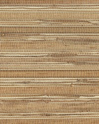 Nassau Weave Natural by  Scalamandre Wallcoverings