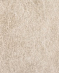 Cumulus Silver by  Scalamandre Wallcoverings