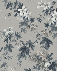 Sandra Sandstone by  Scalamandre Wallcoverings