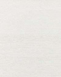 Ventura Oyster by  Scalamandre Wallcoverings