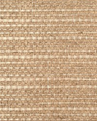 Simply Sisal Putty by  Scalamandre Wallcoverings