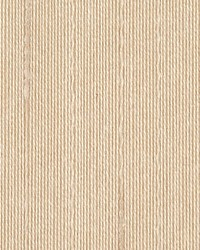 Simple Silk Cream by  Scalamandre Wallcoverings