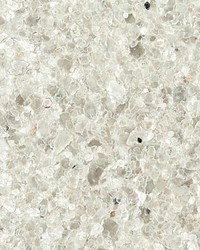 Melanies Mica Ice by  Scalamandre Wallcoverings