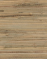 Organic Rushcloth Straw by  Scalamandre Wallcoverings