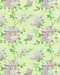 7583-15 LILACS by