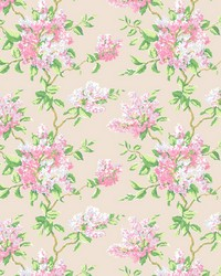 7583-7 LILACS by
