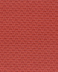 7716-1 SISAL PLAIN  by