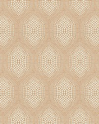 7802-21 CONNECT THE DOTS DESERT by