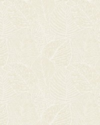 COLTRAINE 1 LINEN by