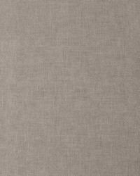 DAPPER 10 TAUPE by