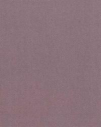 Oakley 18 Lilac by