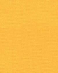 Oakley 39 Sunflower by