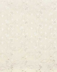 Popetti 1 Ivory by