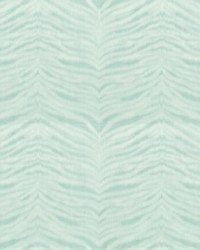 SKIN 5 TURQUOISE by