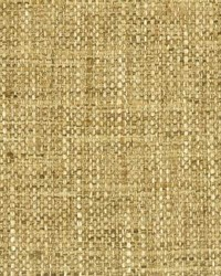 Curb Appeal Stout Fabric