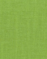 TICONDEROGA 35 GRASS by