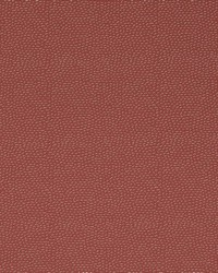 TITAN 8 RUSSET by