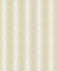 VANQUISH 1 TAUPE by