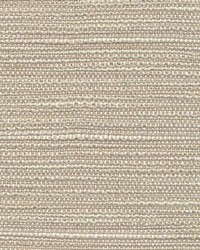 Kasmir Acadia Point Linen Fabric