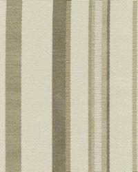 Avery Stripe Seashell by