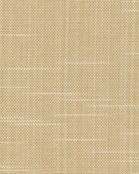 Kasmir Bixler Honey Fabric