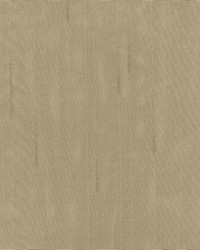 Burnished Stripe Taupe by