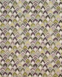 Burwick Grove Hyacinth by