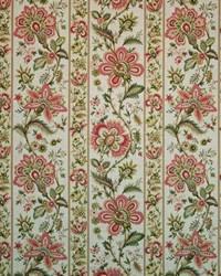 Burwick Manor Begonia by