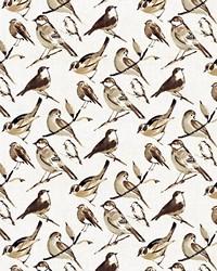 Grey Birds Fabric  Bye Bye Birdie Charcoal