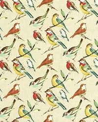 Multi Bird Fabric  Bye Bye Birdie Meadow