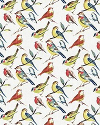 Multi Bird Fabric  Bye Bye Birdie Summer