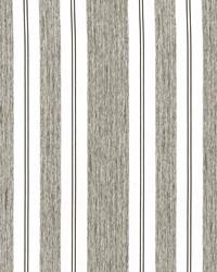 Campania Stripe Pewter by