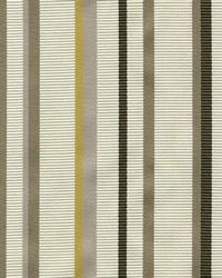 Cassel Stripe Amber by