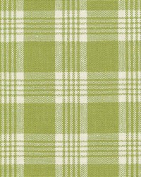 Chantilly Plaid Snow Pea by