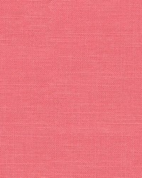 Corby Begonia Pink by