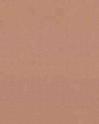 Debonair Cinnamon by