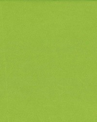 Debonair Lime Green by