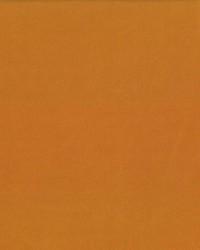 Debonair Saffron by