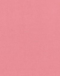 Debonair Shell Pink by