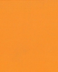 Debonair Sun Orange by