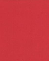 Debonair Tango Red by