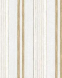 Double Decker Birch by