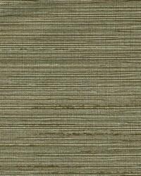 Duquesa Zebra Wood by