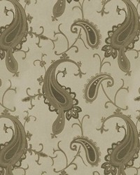 Brown Classic Paisley Fabric  Flower Mound Latte