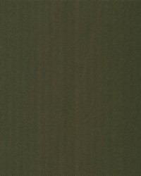 Gifford Chestnut by